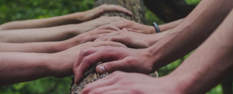 Shane Rounce - Handen op boomstam
